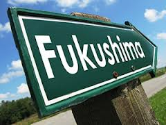 Fukushimi-Daiichi lessons for the process industries